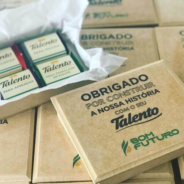 004 CAIXA DE TALENTOS FLAT DA BOM FUTURO
